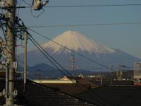 Blog_799