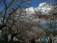 Blog_984