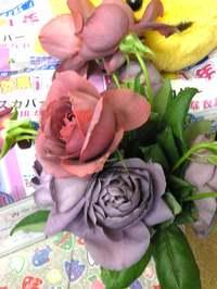 Image0051