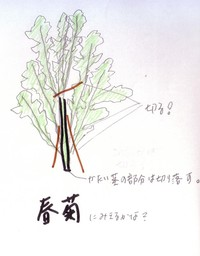 Scan20131_1